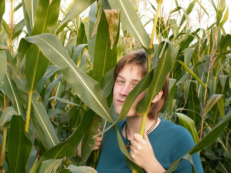 Барышня вставила в себя кукурузу